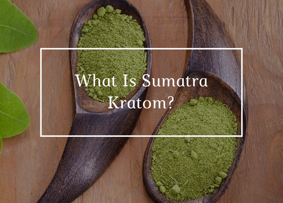 What is Sumatra Kratom?