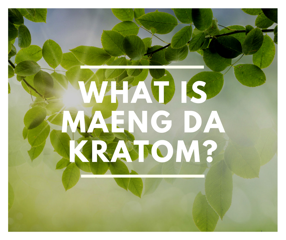 What Is Maeng Da Kratom? Quality Kratom Info - Kratom Sensation