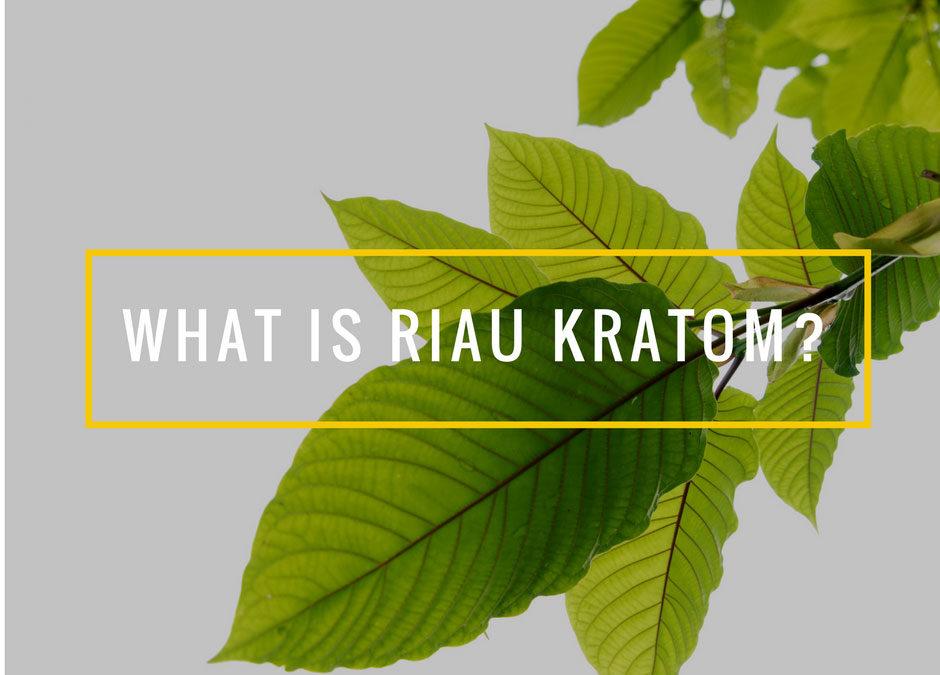 What Is Riau Kratom?