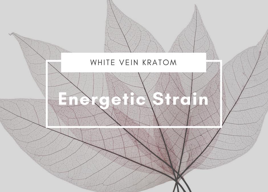 White Vein Kratom: Energetic Strain