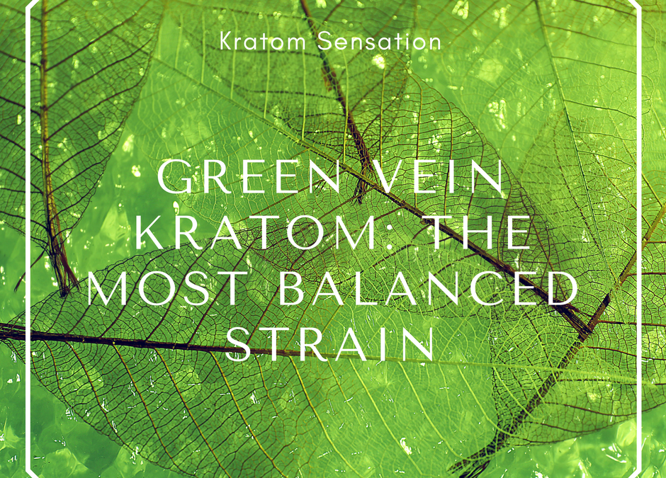 Green Vein Kratom: The Most Balanced Strain