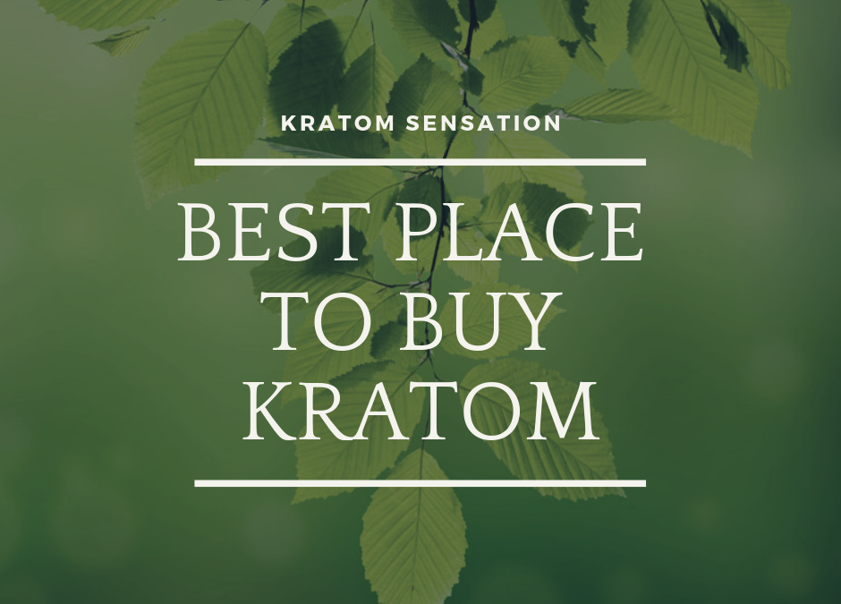 Kratom Sensation: The Best Place To Buy Kratom