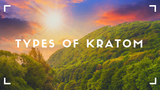 types of kratom