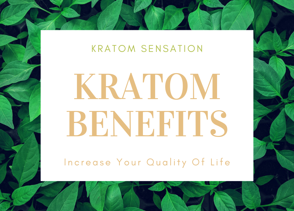 Kratom Benefits To Increase Your Quality Of Life