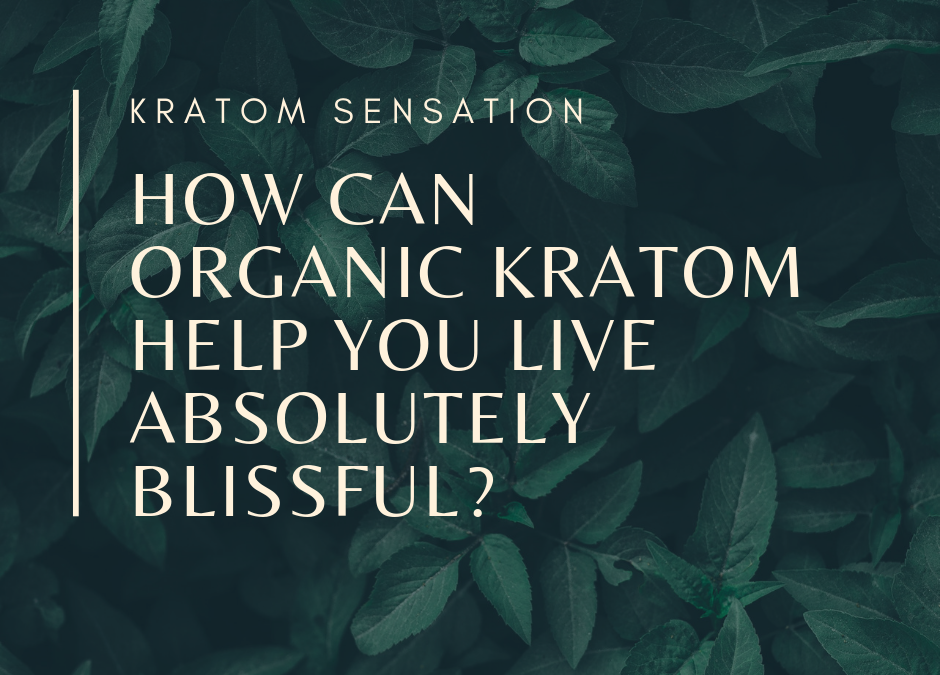 How Can Organic Kratom Help You Live Life Absolutely Blissful?